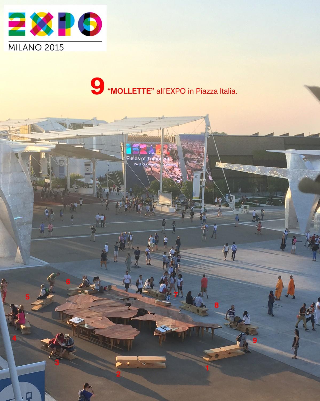 00 Molletta EXPO