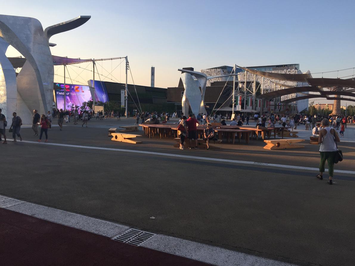 03 Molletta EXPO